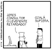 los consultores...